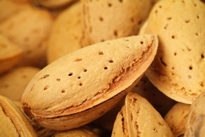 Link Between Heart Disease, Cancer and Nuts